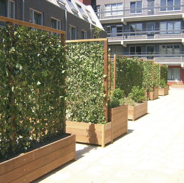 Zielone ekrany patio