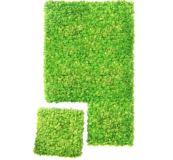 Ogrody Wertykalne Zielone Sciany Mech Na Scianie