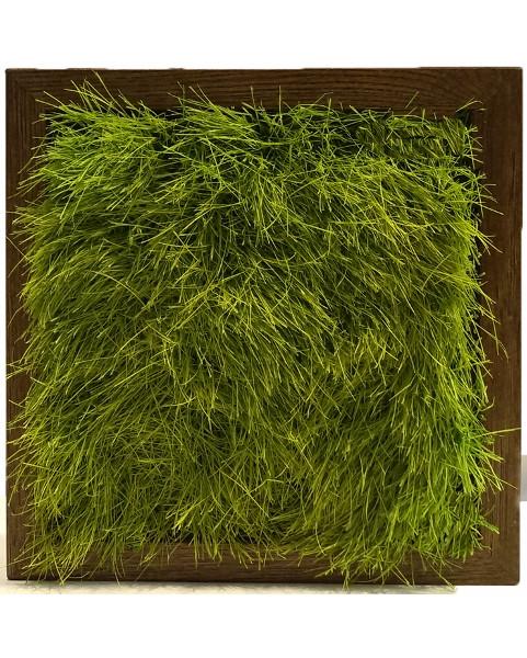Obraz z trawy